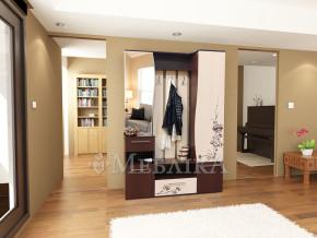 Красиві меблі для прихожої Евіта з малюнком